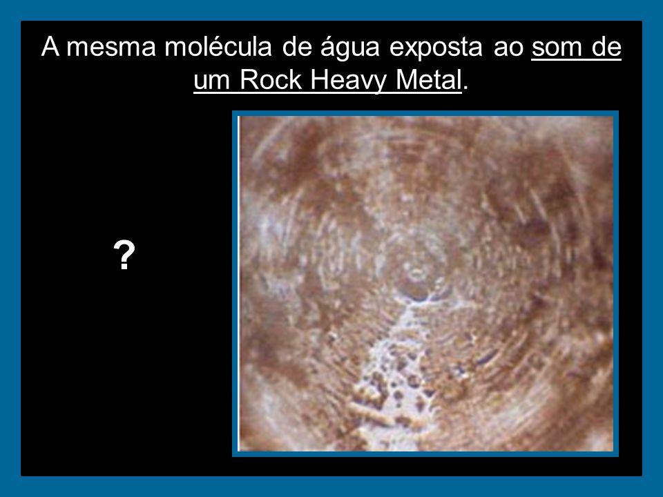 A mesma molécula de água exposta ao som de um Rock Heavy Metal. ?