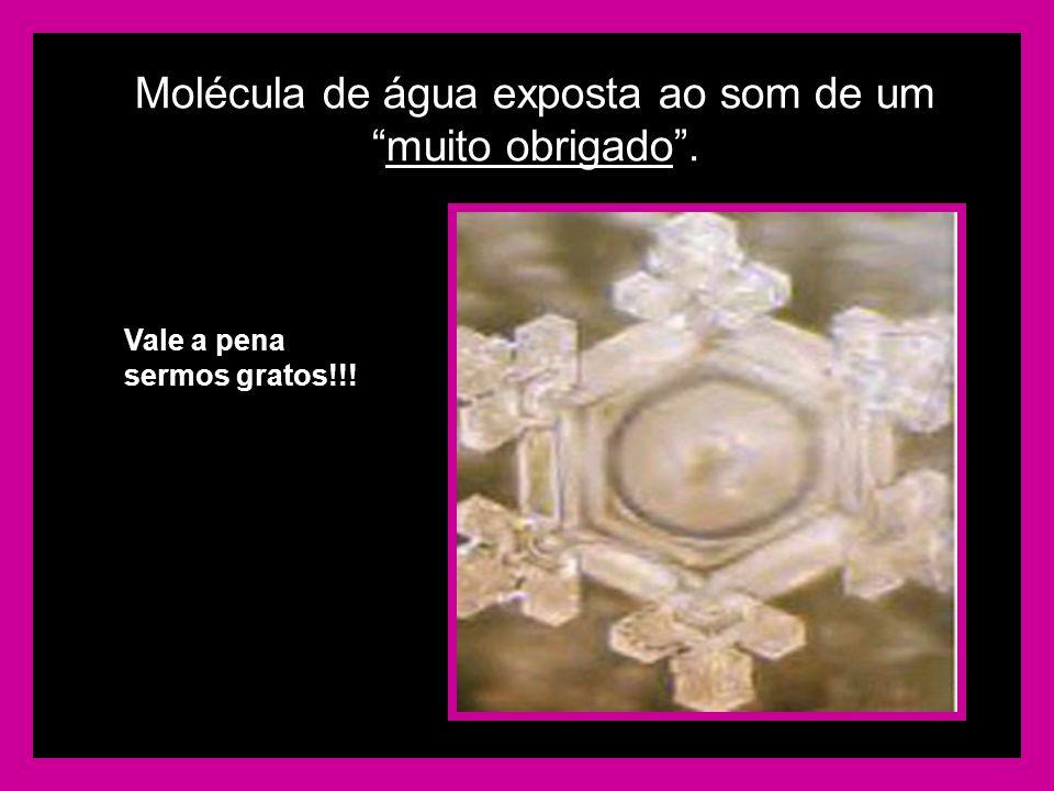 Molécula de água exposta ao som de ummuito obrigado. Vale a pena sermos gratos!!!