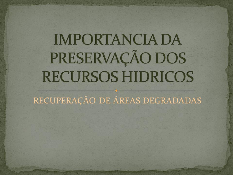 TODA A VEGETAÇÃO DISPOSTA AO LONGO DE RECURSOS HIDRICOS.