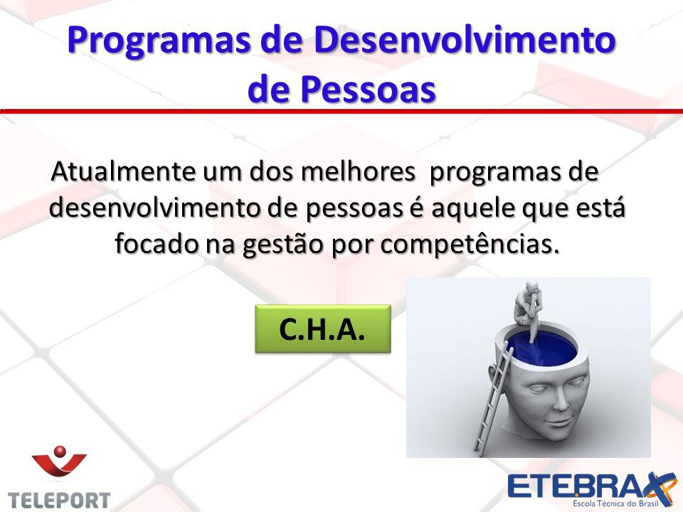 Programas de Desenvolvimento de Pessoas Atualmente um dos melhores programas de desenvolvimento de pessoas é aquele que está focado na gestão por comp