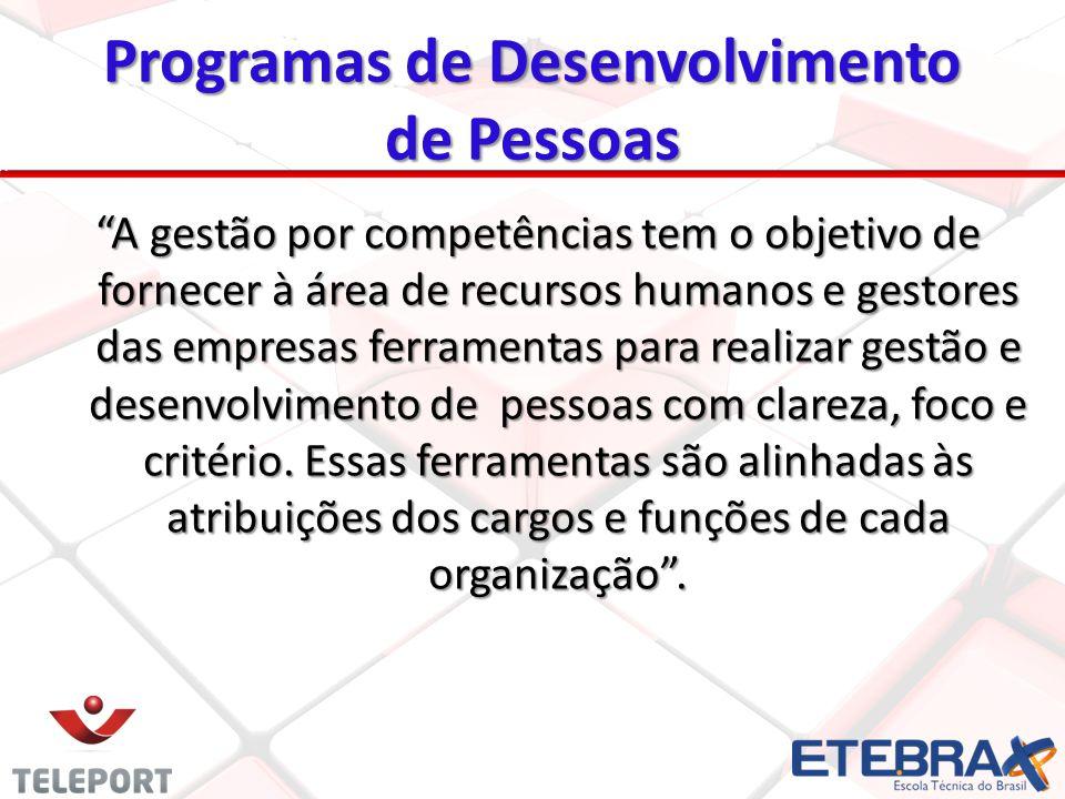 Programas de Desenvolvimento de Pessoas A gestão por competências tem o objetivo de fornecer à área de recursos humanos e gestores das empresas ferram