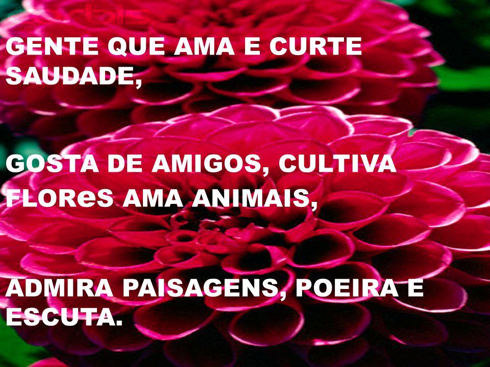 GENTE QUE AMA E CURTE SAUDADE, GOSTA DE AMIGOS, CULTIVA FLOR e S AMA ANIMAIS, ADMIRA PAISAGENS, POEIRA E ESCUTA.
