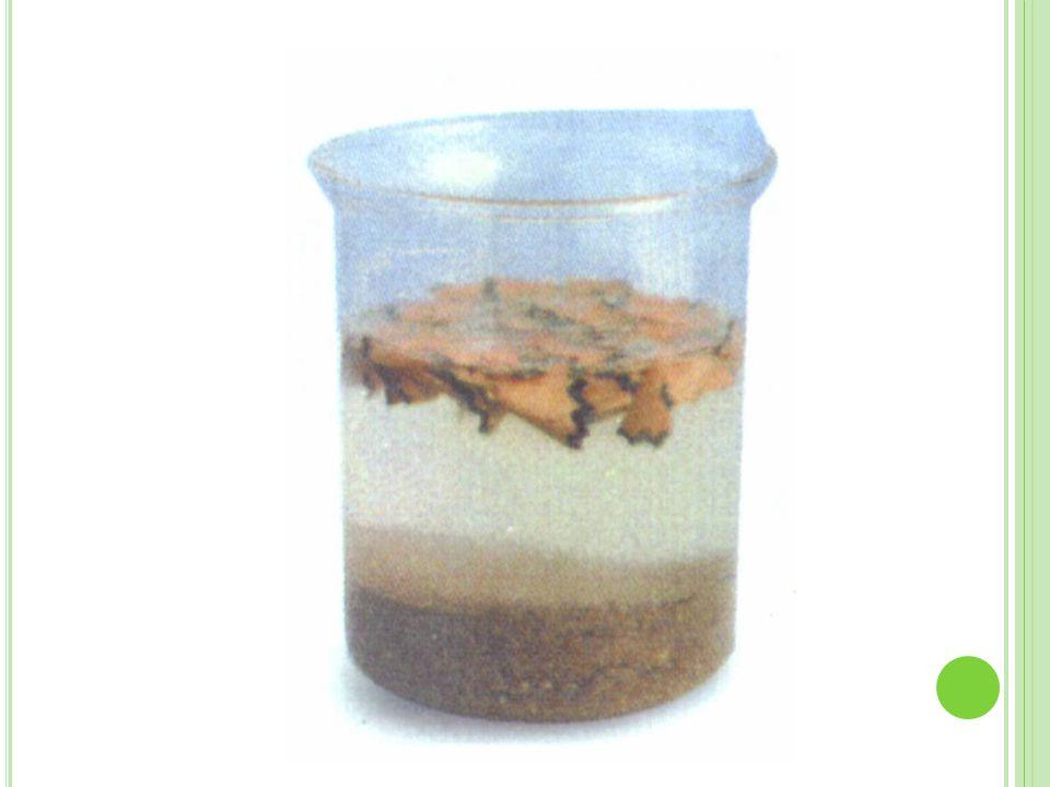 Decantação Quando a água barrenta é colocada em repouso, a terra tende a se depositar no fundo do recipiente.