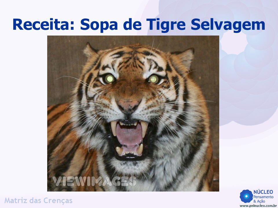 www.pnlnucleo.com.br Matriz das Crenças Receita: Sopa de Tigre Selvagem Ué.