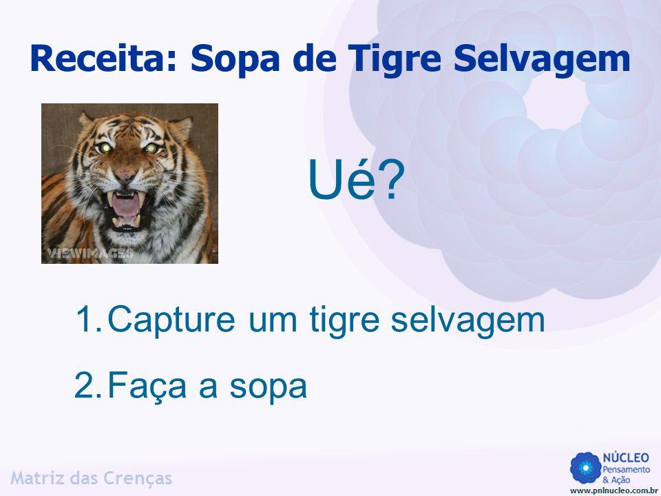 www.pnlnucleo.com.br Matriz das Crenças Receita: Sopa de Tigre Selvagem Ué? 1.Capture um tigre selvagem 2.Faça a sopa