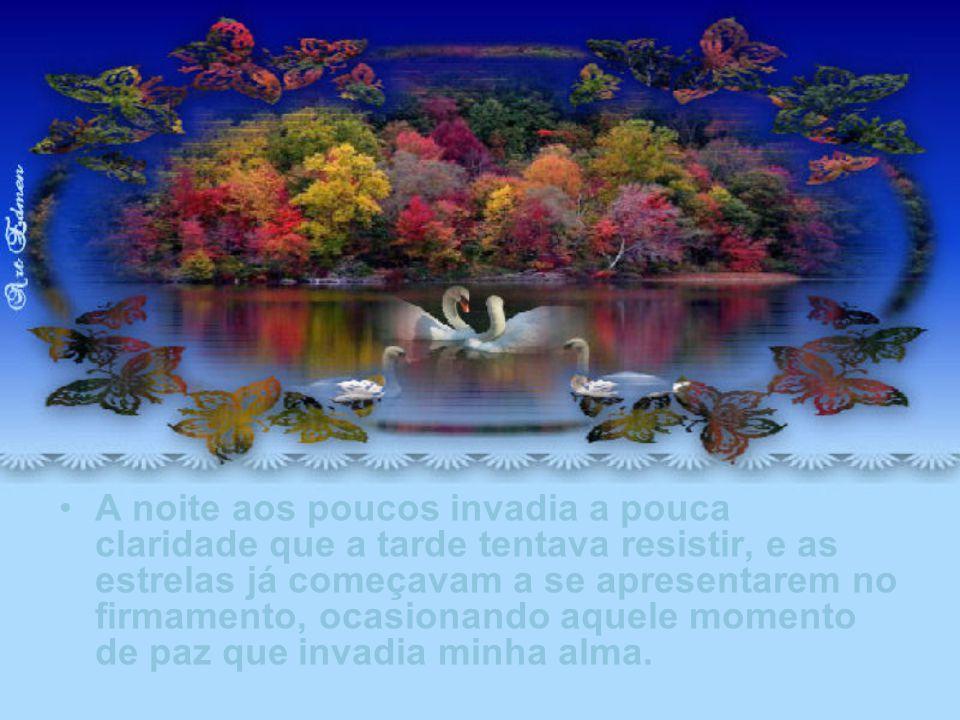 Certamente era um casal, um lindo casal de cisnes que viera, talvez, viver o momento de ternura ou de paz que a natureza lhes proporcionara.