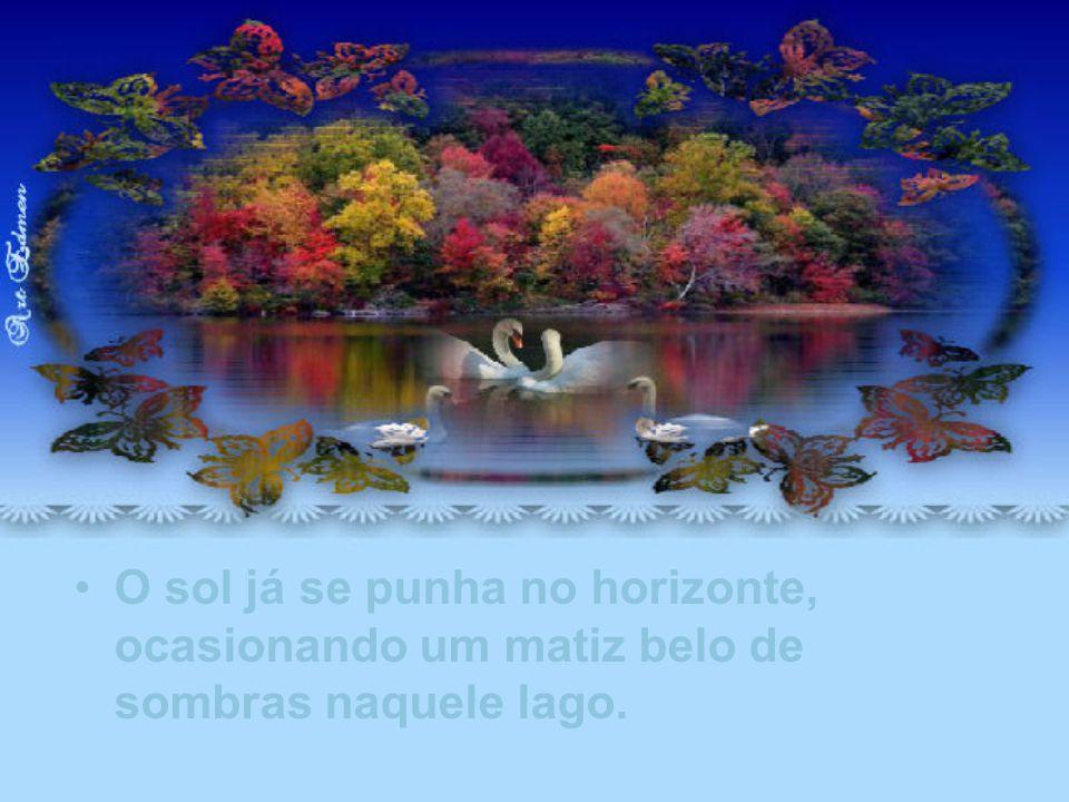 Aproveitei a oportunidade daquele momento de paz, para lhe dizer em pensamento, que a distância não é um obstáculo ao amor,