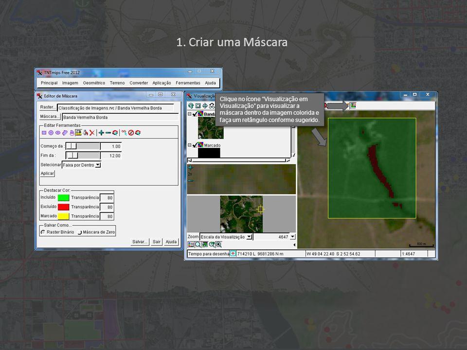 Clique no ícone Visualização em Visualização para visualizar a máscara dentro da imagem colorida e faça um retângulo conforme sugerido.