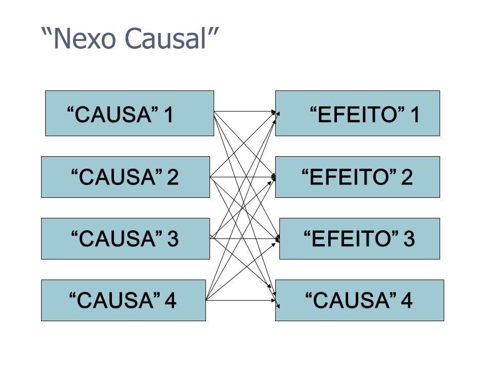 Nexo Causal CAUSA 1 CAUSA 2 CAUSA 3 CAUSA 4 EFEITO 1 EFEITO 2 EFEITO 3 CAUSA 4