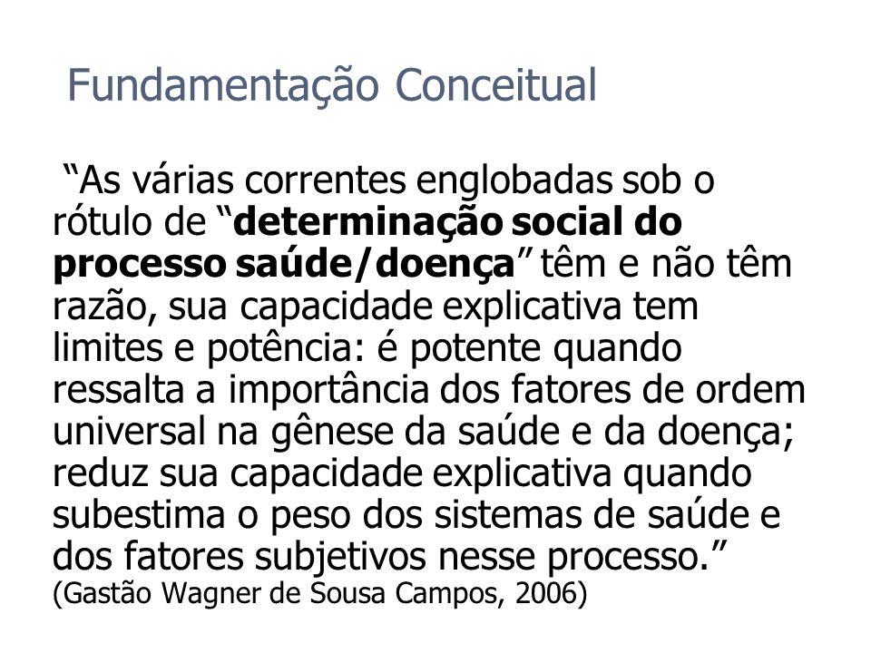 Fundamentação Conceitual As várias correntes englobadas sob o rótulo de determinação social do processo saúde/doença têm e não têm razão, sua capacida