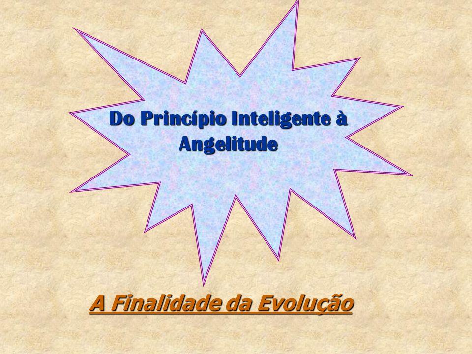 A missão educacional do espírita, porém, não se dá apenas no plano moral.A missão educacional do espírita, porém, não se dá apenas no plano moral.