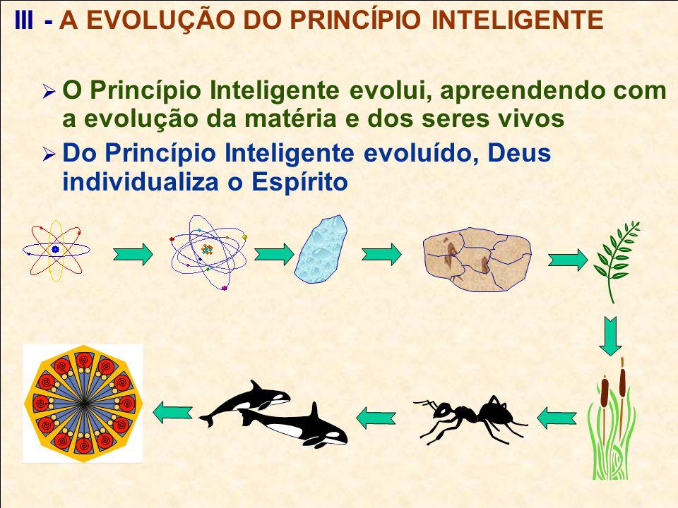 Fontes de Consulta DE MARIO, M.A.Visão Espírita da Educação.DE MARIO, M.A.