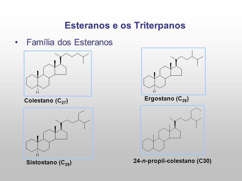 Esteranos e os Triterpanos Família dos Esteranos Colestano (C 27 ) Ergostano (C 28 ) Sistostano (C 29 ) 24-n-propil-colestano (C30)