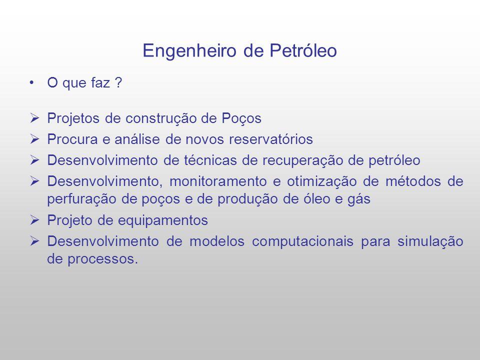 Engenheiro de Petróleo O que faz .