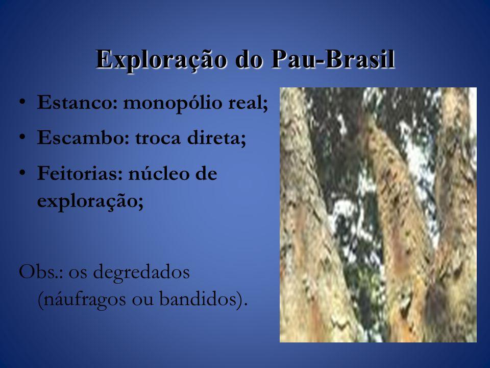 Exploração do Pau-Brasil Estanco: monopólio real; Escambo: troca direta; Feitorias: núcleo de exploração; Obs.: os degredados (náufragos ou bandidos).
