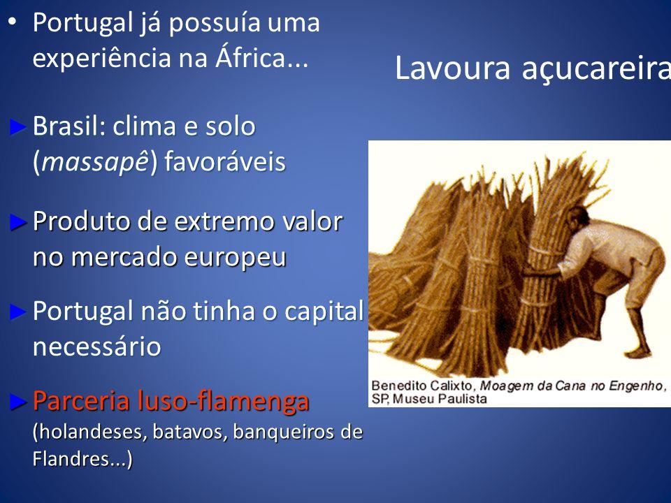 Lavoura açucareira Portugal já possuía uma experiência na África... Brasil: clima e solo (massapê) favoráveis Brasil: clima e solo (massapê) favorávei