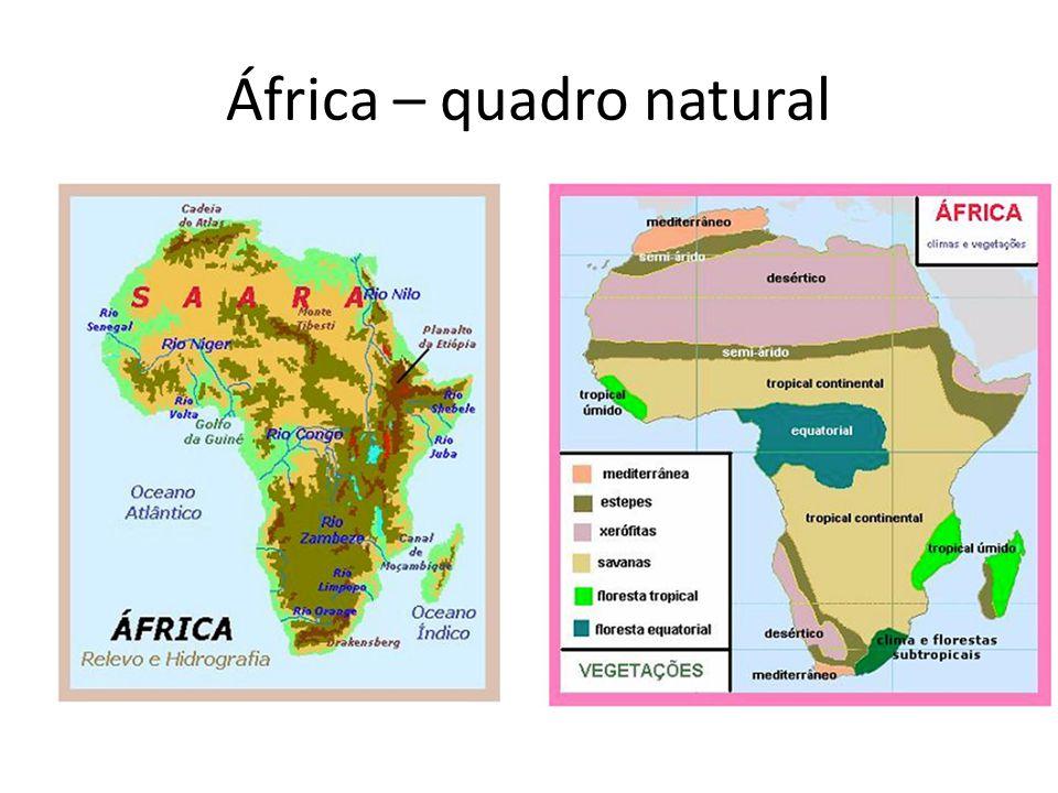 Relevo e Estrutura Geológica Predominam os terrenos cristalinos e uma série de planaltos, continente totalmente trabalhado pela erosão.