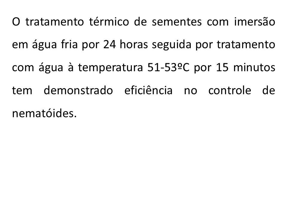 O tratamento térmico de sementes com imersão em água fria por 24 horas seguida por tratamento com água à temperatura 51-53ºC por 15 minutos tem demons