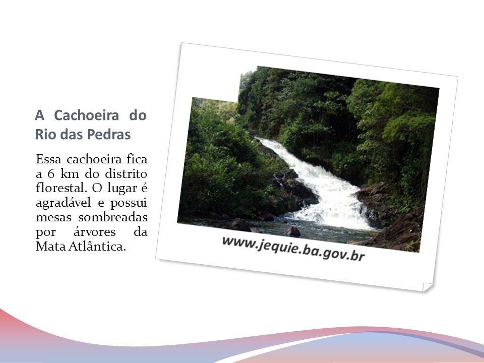 A Cachoeira do Rio das Pedras Essa cachoeira fica a 6 km do distrito florestal. O lugar é agradável e possui mesas sombreadas por árvores da Mata Atlâ