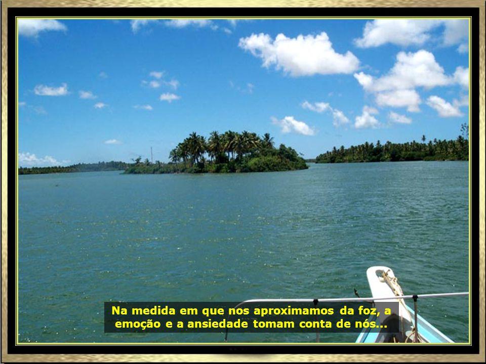 Piaçabuçu, em Alagoas, é o último município banhado pelo São Francisco antes de sua foz.