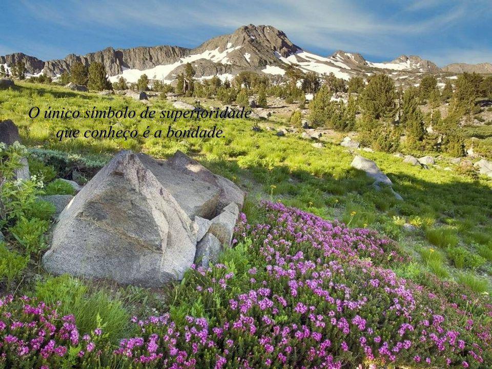 O sábio não se senta para se lamentar, mas dá-se alegremente à tarefa de reparar o dano causado. O sábio não se senta para se lamentar, mas dá-se aleg