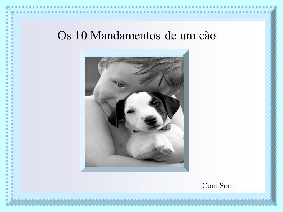 Os 10 Mandamentos de um cão Com Som