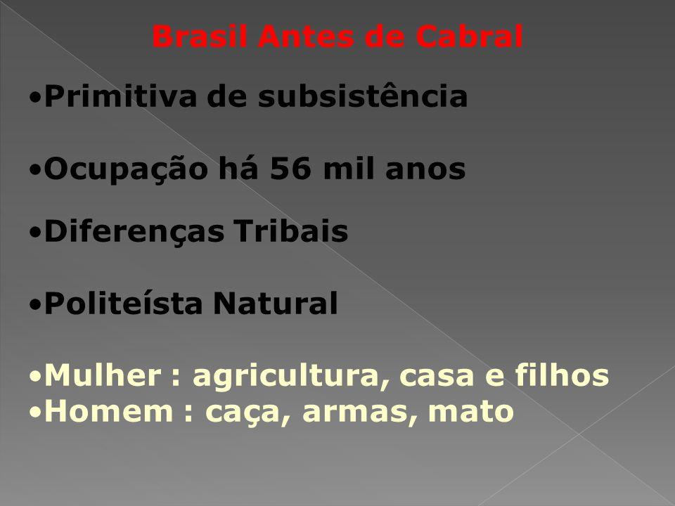 Brasil Antes de Cabral Primitiva de subsistência Ocupação há 56 mil anos Diferenças Tribais Politeísta Natural Mulher : agricultura, casa e filhos Homem : caça, armas, mato