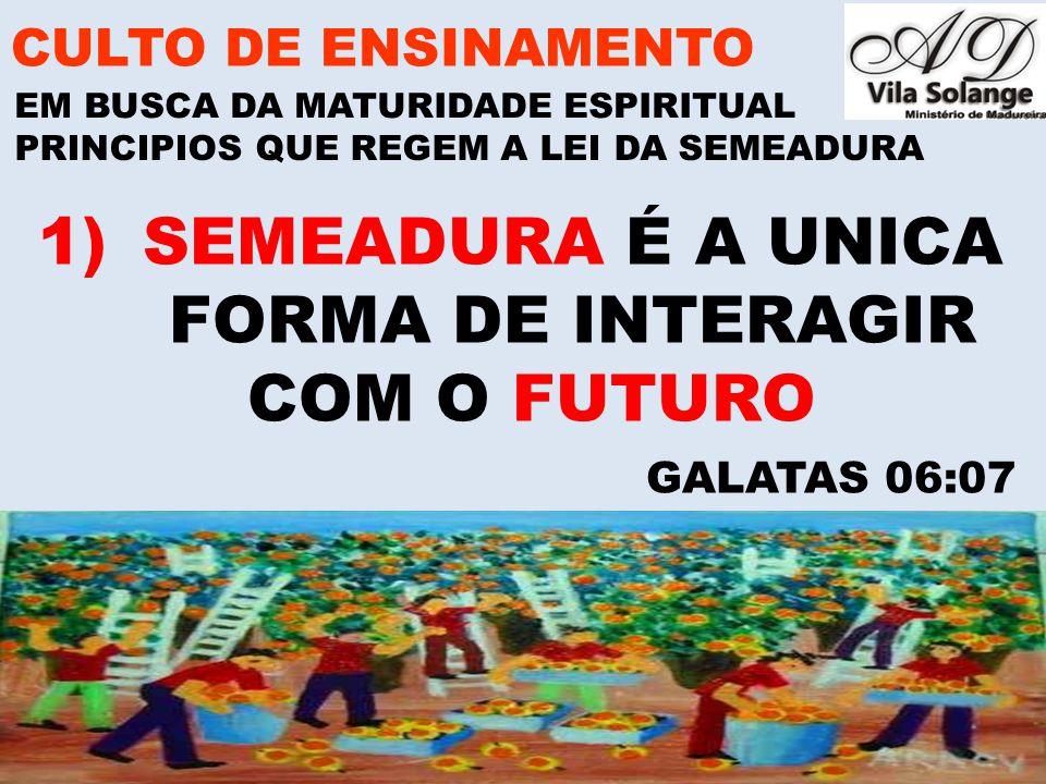 www.advilasolange.com.br 2) ESCOLHA SEMENTES BOAS PARA SEREM SEMEADAS CULTO DE ENSINAMENTO EM BUSCA DA MATURIDADE ESPIRITUAL PRINCIPIOS QUE REGEM A LEI DA SEMEADURA GALATAS 05:16-17