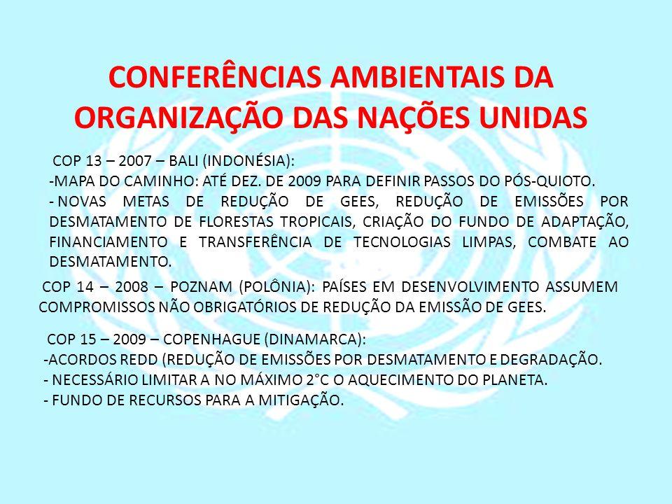CONFERÊNCIAS AMBIENTAIS DA ORGANIZAÇÃO DAS NAÇÕES UNIDAS COP 13 – 2007 – BALI (INDONÉSIA): -MAPA DO CAMINHO: ATÉ DEZ. DE 2009 PARA DEFINIR PASSOS DO P