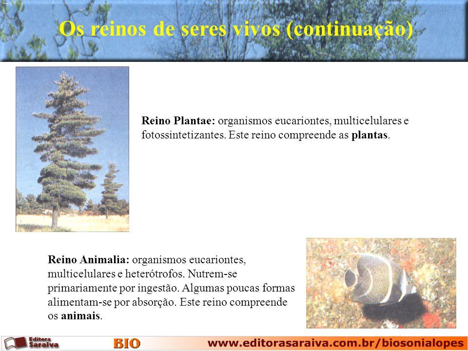 Reino Plantae: organismos eucariontes, multicelulares e fotossintetizantes. Este reino compreende as plantas. Reino Animalia: organismos eucariontes,