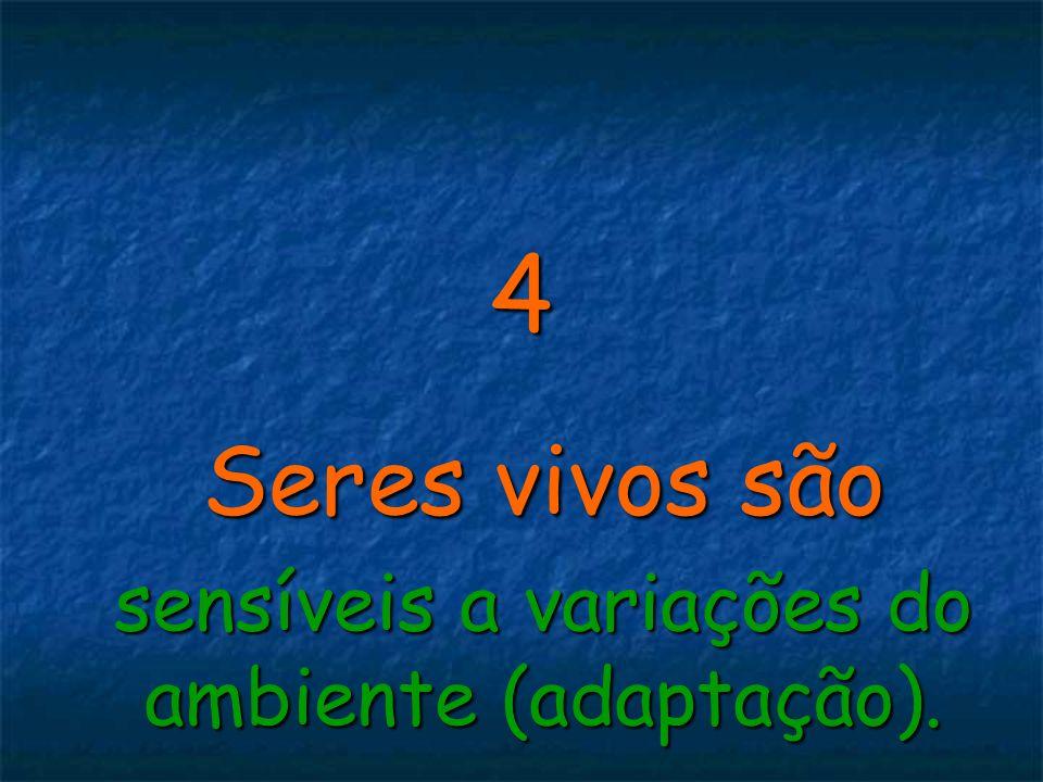 4 Seres vivos são sensíveis a variações do ambiente (adaptação).