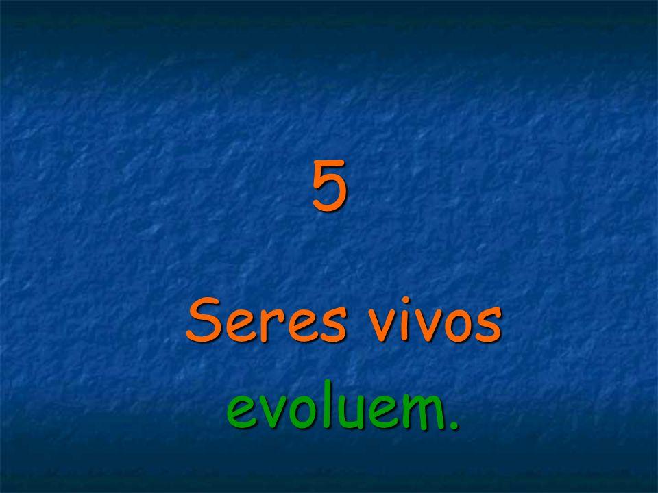 5 Seres vivos evoluem.