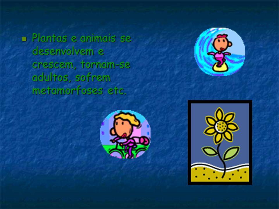 Plantas e animais se desenvolvem e crescem, tornam-se adultos, sofrem metamorfoses etc. Plantas e animais se desenvolvem e crescem, tornam-se adultos,