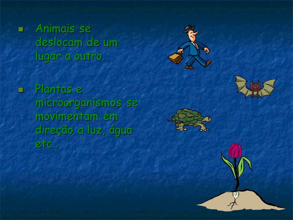 Animais se deslocam de um lugar a outro. Animais se deslocam de um lugar a outro. Plantas e microorganismos se movimentam em direção a luz, água etc..