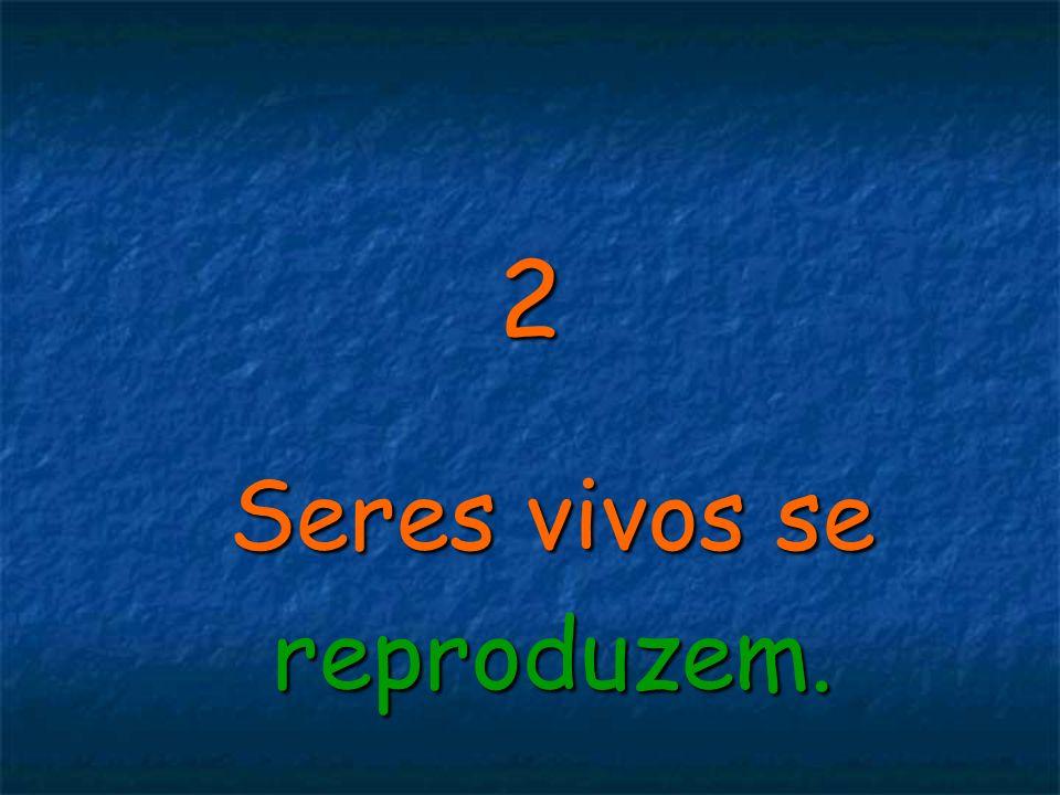2 Seres vivos se reproduzem.