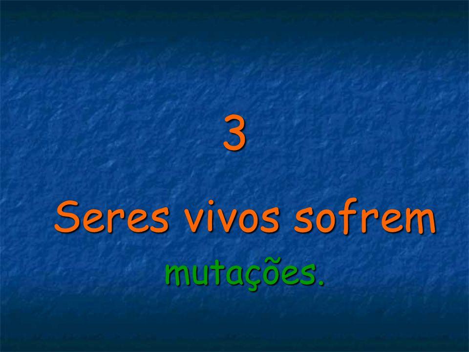 3 Seres vivos sofrem mutações.
