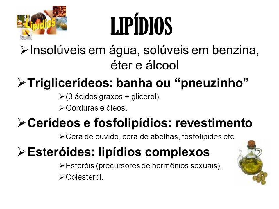 LIPÍDIOS Insolúveis em água, solúveis em benzina, éter e álcool Triglicerídeos: banha ou pneuzinho (3 ácidos graxos + glicerol). Gorduras e óleos. Cer