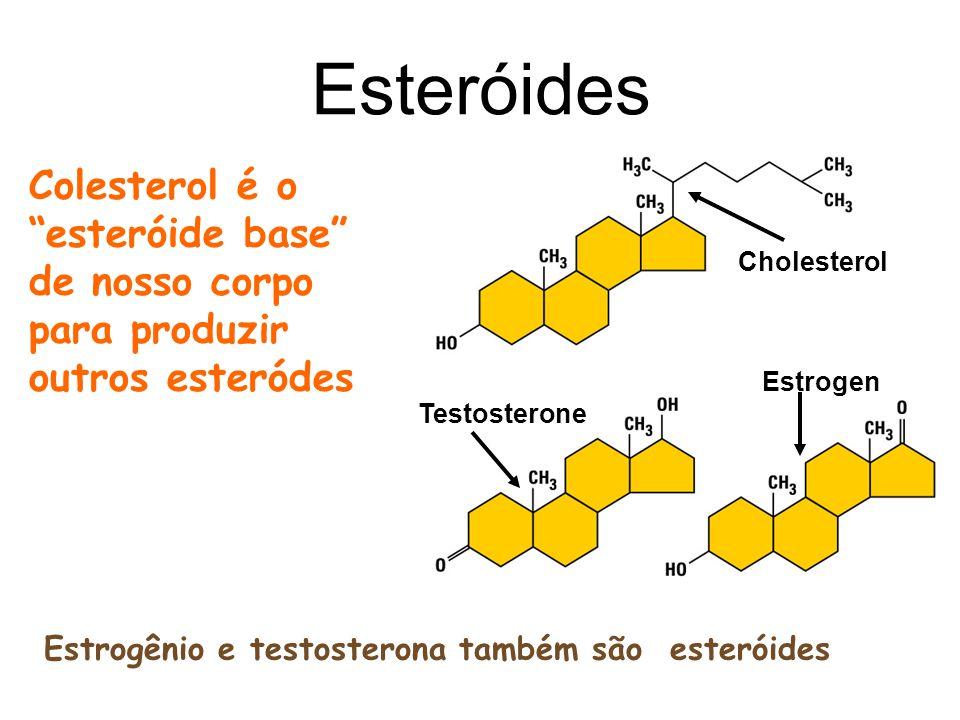 7 Esteróides Colesterol é o esteróide base de nosso corpo para produzir outros esteródes Estrogênio e testosterona também são esteróides Cholesterol T