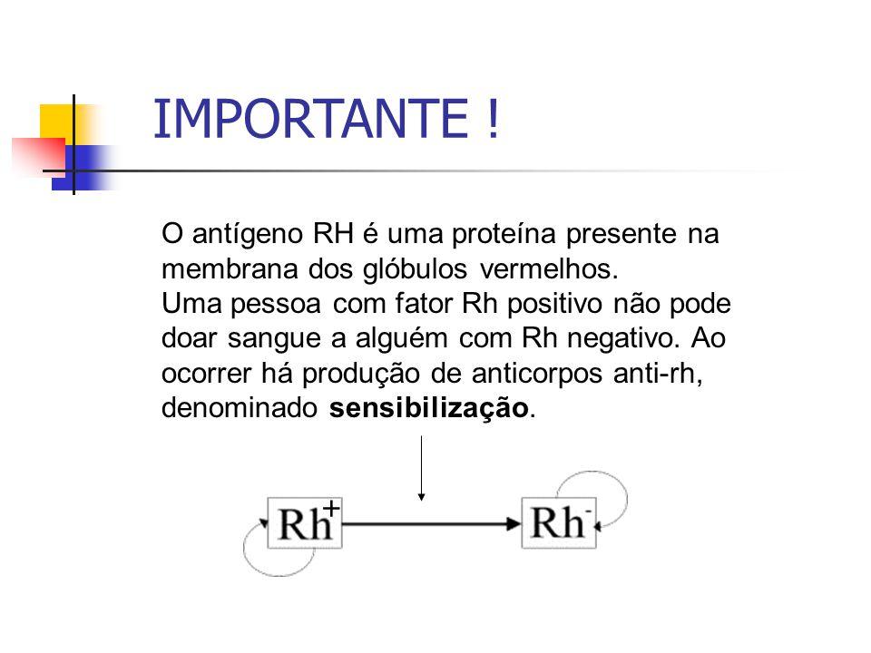 O antígeno RH é uma proteína presente na membrana dos glóbulos vermelhos. Uma pessoa com fator Rh positivo não pode doar sangue a alguém com Rh negati