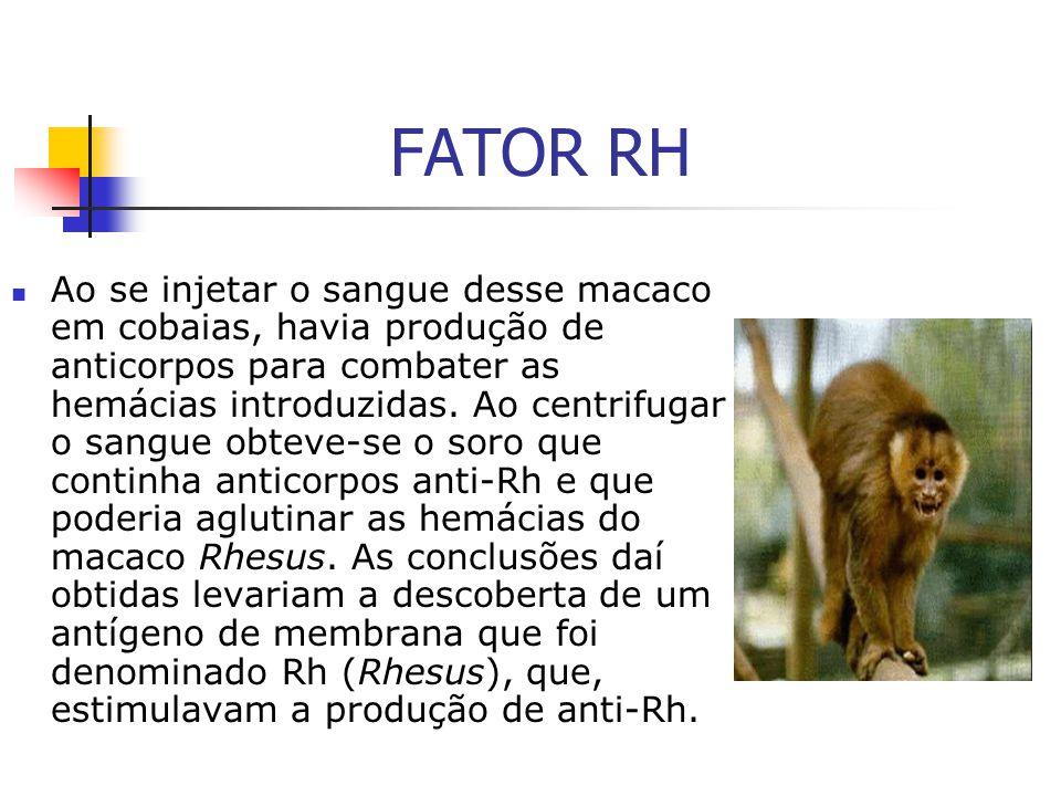 FATOR RH Ao se injetar o sangue desse macaco em cobaias, havia produção de anticorpos para combater as hemácias introduzidas. Ao centrifugar o sangue