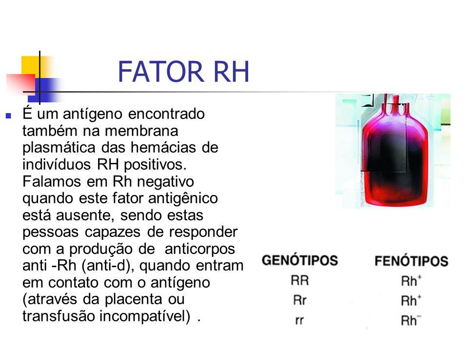 FATOR RH É um antígeno encontrado também na membrana plasmática das hemácias de indivíduos RH positivos. Falamos em Rh negativo quando este fator anti