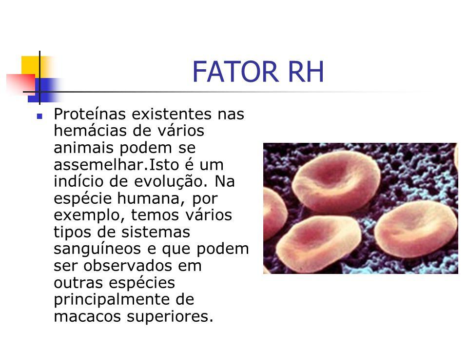 FATOR RH Proteínas existentes nas hemácias de vários animais podem se assemelhar.Isto é um indício de evolução. Na espécie humana, por exemplo, temos