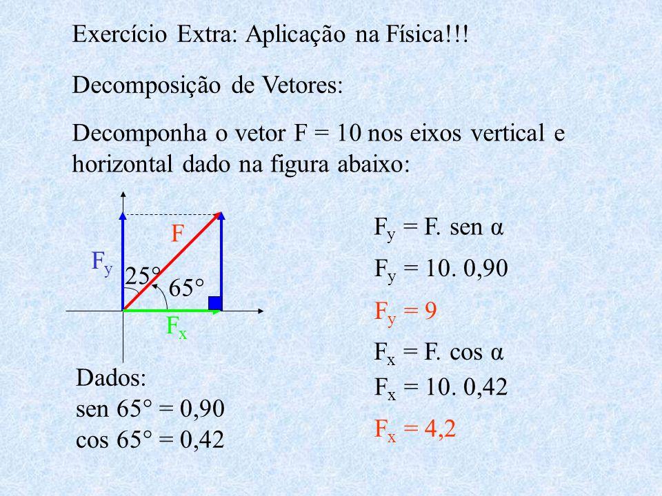 Exercício Extra: Aplicação na Física!!! Decomposição de Vetores: Decomponha o vetor F = 10 nos eixos vertical e horizontal dado na figura abaixo: 25°