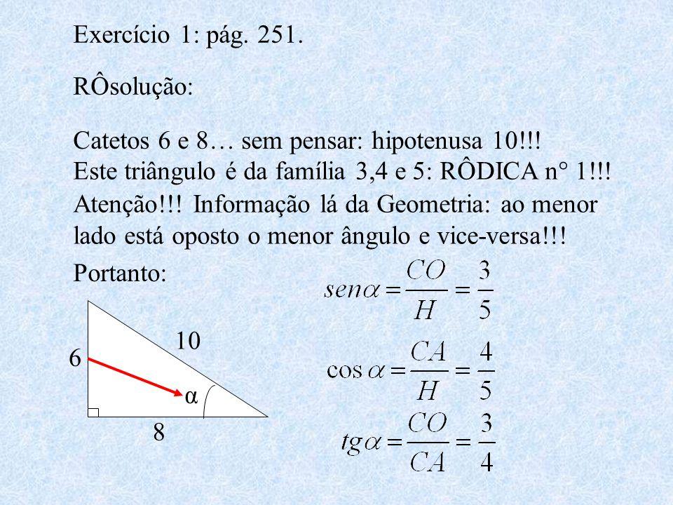 Exercício 1: pág. 251. RÔsolução: Catetos 6 e 8… sem pensar: hipotenusa 10!!! Este triângulo é da família 3,4 e 5: RÔDICA n° 1!!! Atenção!!! Informaçã
