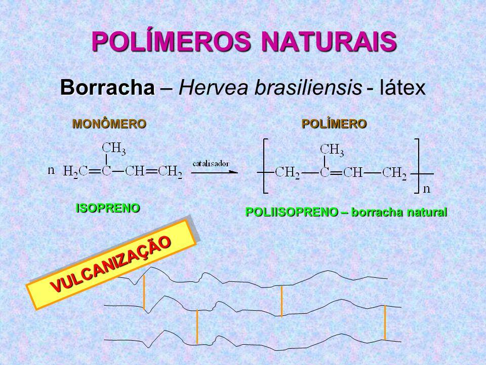 POLÍMEROS NATURAIS Borracha Borracha – Hervea brasiliensis - látex MONÔMEROPOLÍMERO ISOPRENO POLIISOPRENO – borracha natural VULCANIZAÇÃOVULCANIZAÇÃO
