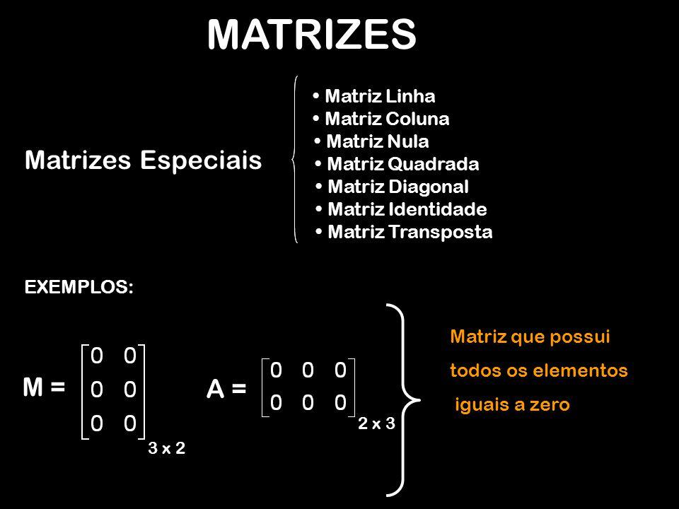 MATRIZES EXEMPLOS: M = 3 x 2 Matriz que possui todos os elementos iguais a zero A = 2 x 3 Matrizes Especiais Matriz Linha Matriz Coluna Matriz Nula Matriz Quadrada Matriz Diagonal Matriz Identidade Matriz Transposta