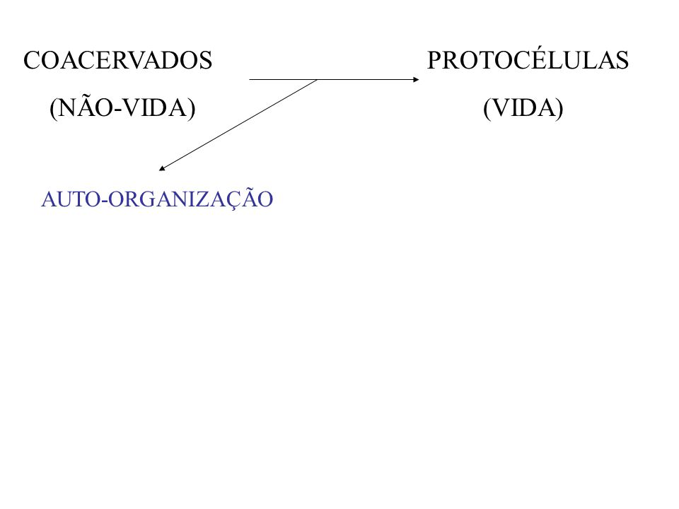 COACERVADOS PROTOCÉLULAS (NÃO-VIDA) (VIDA)