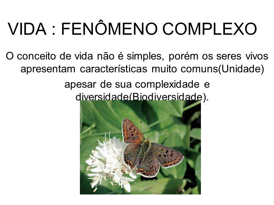 BIOLOGIA:CONCEITO Biologia significa estudo da vida (Bio = vida; Logia = estudo).