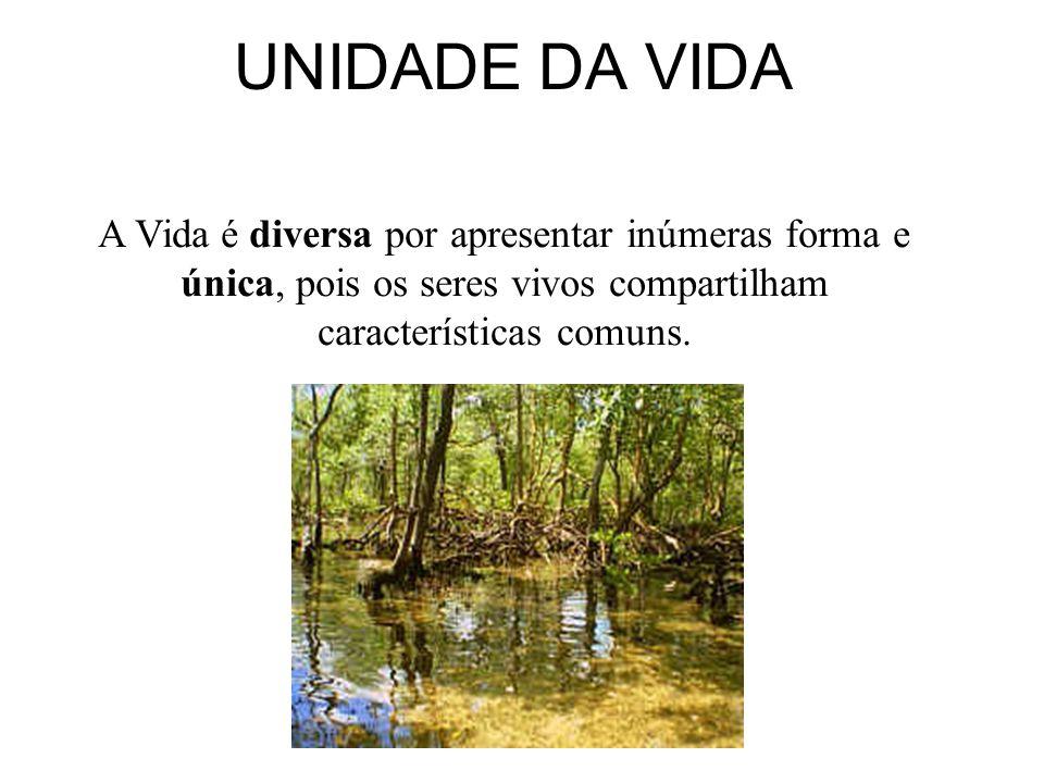 VIDA : FENÔMENO COMPLEXO O conceito de vida não é simples, porém os seres vivos apresentam características muito comuns(Unidade) apesar de sua complex