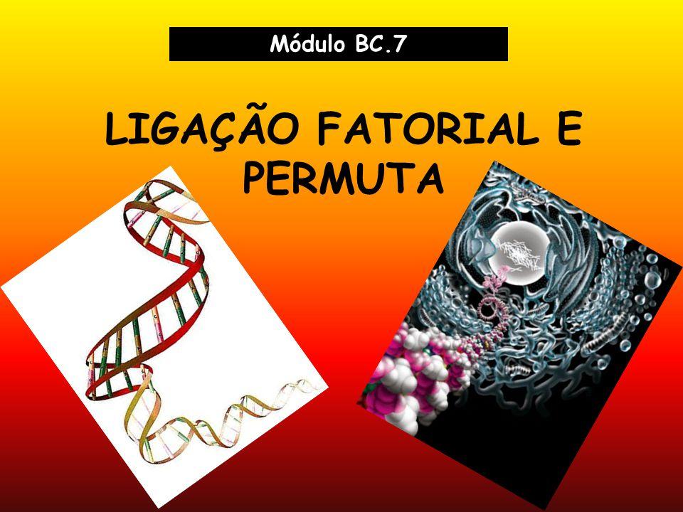 LIGAÇÃO FATORIAL E PERMUTA Módulo BC.7